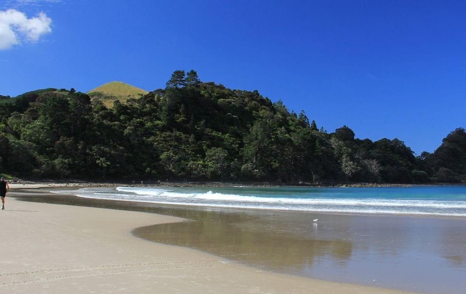 The Top 5 Best Beaches in New Zealand
