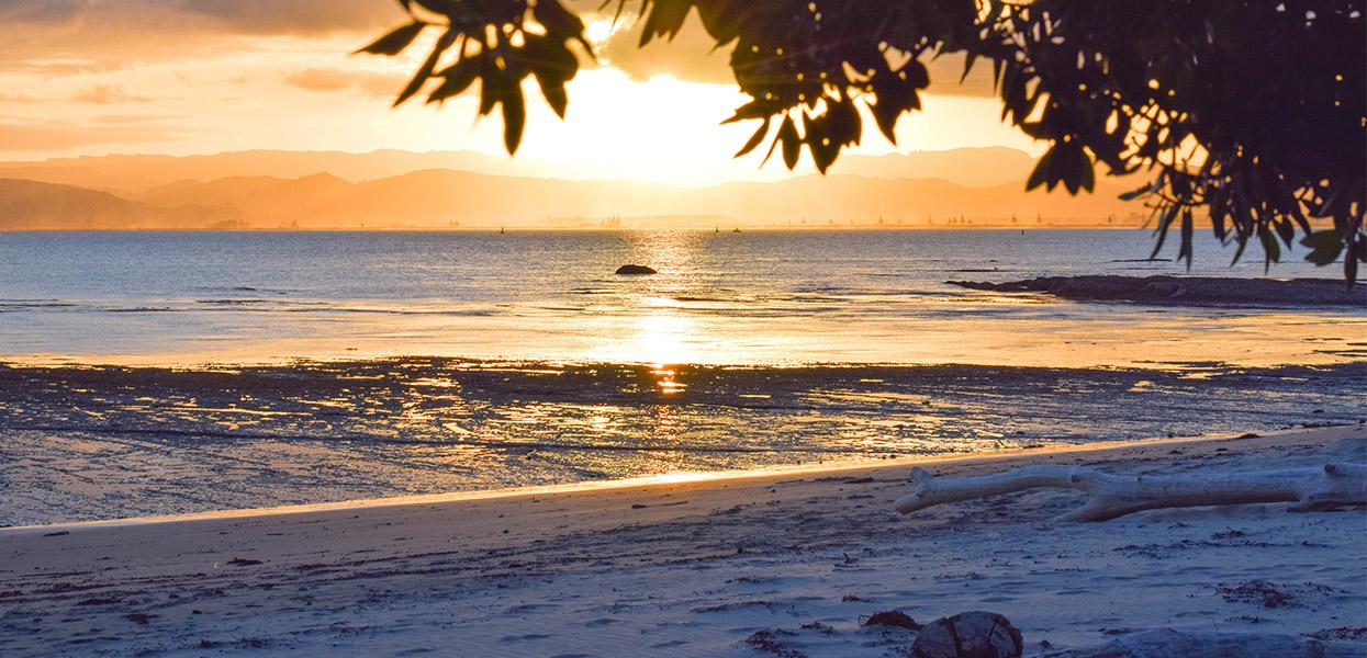 See the Sun Rise on Wainui Beach