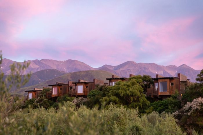 Treetops, Whales and Cray Tails: Kaikōura Luxury Escape